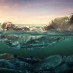 Eine Plastikflasche schwimmt im Wasser und symbolisiert die verschmutzen Meere