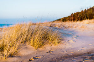Fußspuren im Sand entlang einer Düne.